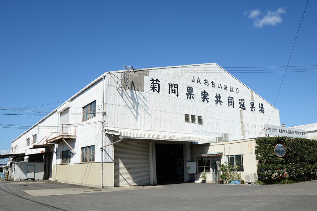 おちいまばり共選(菊間作業所)